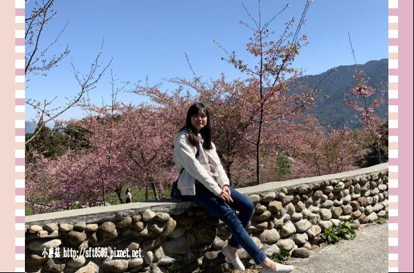 108.3.2.(173)福壽山農場-千櫻園.JPG
