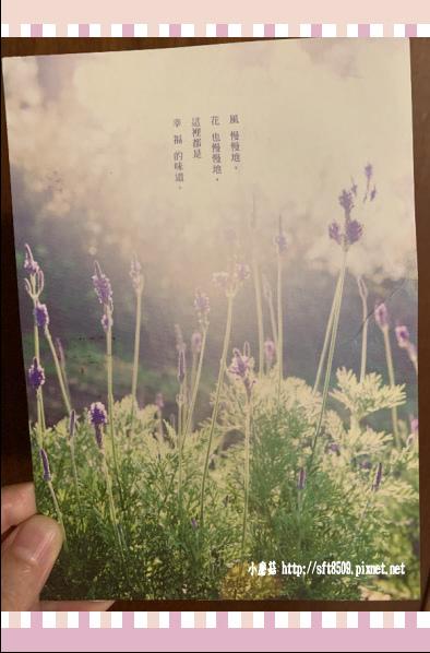 108.2.3.(71)台中新社-薰衣草森林.JPG