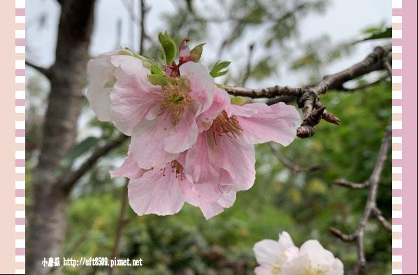 108.3.30.(10)苗栗大湖-石風城堡‧創意料理.JPG