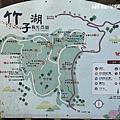 108.5.26.(1)竹子湖-大賞園繡球花田.JPG