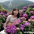 108.5.26.(25)竹子湖-大賞園繡球花田.JPG