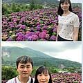108.5.26.(124)竹子湖-大賞園繡球花田.JPG