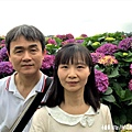 108.5.26.(140)竹子湖-大賞園繡球花田.JPG