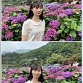 108.5.26.(183)竹子湖-大賞園繡球花田.JPG