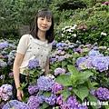 108.5.26.(199)竹子湖-大賞園繡球花田.JPG