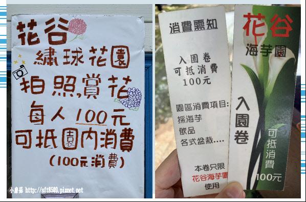 108.5.30.(2)竹子湖-花谷繡球花園.JPG