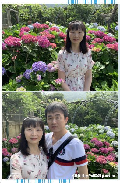 108.5.30.(11)竹子湖-花谷繡球花園.JPG