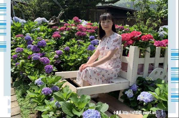 108.5.30.(18)竹子湖-花谷繡球花園.JPG