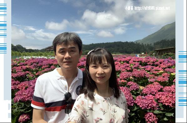 108.5.30.(62)竹子湖-花谷繡球花園.JPG