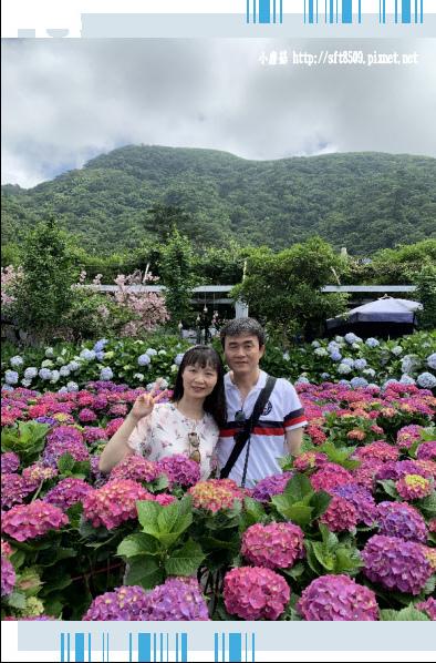 108.5.30.(175)竹子湖-花谷繡球花園.JPG