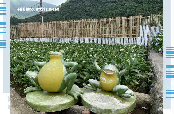 108.5.30.(183)竹子湖-花谷繡球花園.JPG