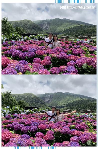 108.5.30.(236)竹子湖-花谷繡球花園.JPG