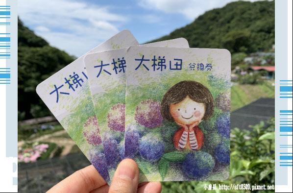 108.6.7.(5)竹子湖-大梯田生態農園.JPG