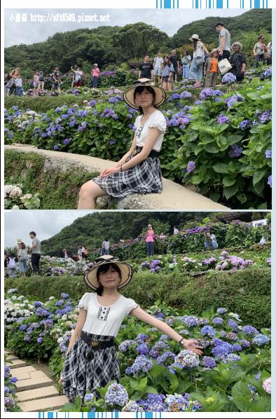 108.6.7.(128)竹子湖-大梯田生態農園.JPG