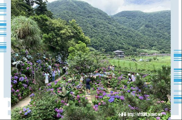 108.6.7.(6)竹子湖-名陽匍休閒農莊.JPG