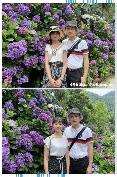 108.6.7.(11)竹子湖-名陽匍休閒農莊.JPG