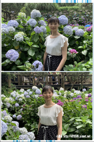 108.6.7.(30)竹子湖-名陽匍休閒農莊.JPG