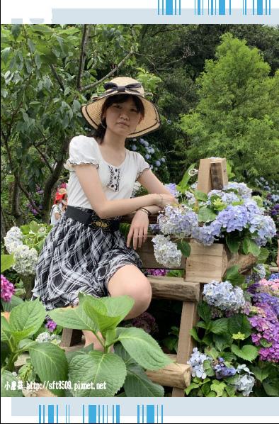 108.6.7.(40)竹子湖-名陽匍休閒農莊.JPG