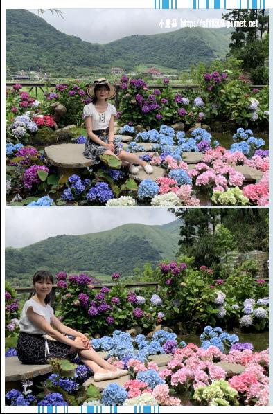 108.6.7.(52)竹子湖-名陽匍休閒農莊.JPG
