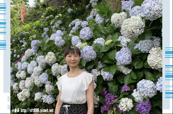 108.6.7.(78)竹子湖-名陽匍休閒農莊.JPG