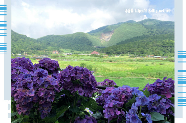108.6.7.(107)竹子湖-名陽匍休閒農莊.JPG