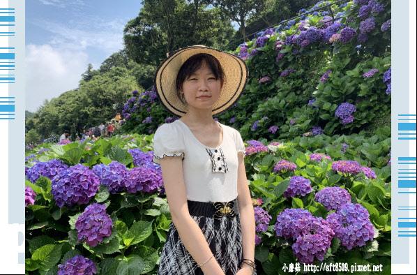 108.6.7.(117)竹子湖-名陽匍休閒農莊.JPG