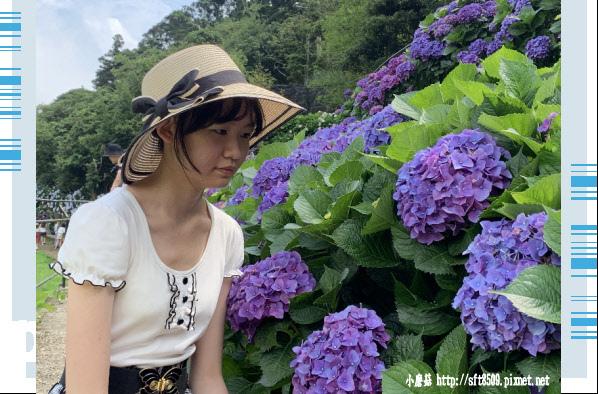 108.6.7.(122)竹子湖-名陽匍休閒農莊.JPG