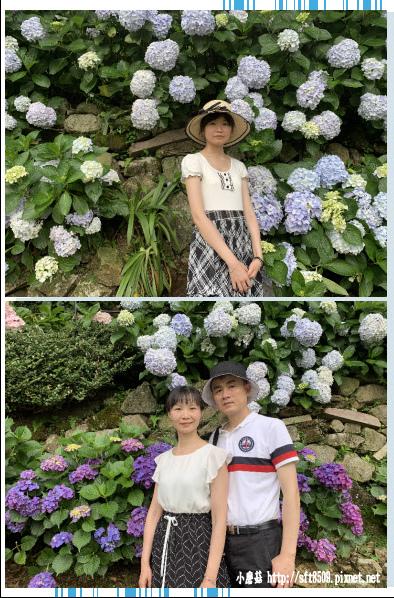 108.6.7.(178)竹子湖-名陽匍休閒農莊.JPG
