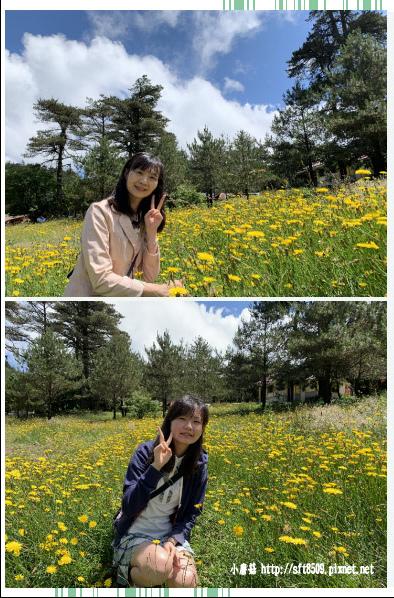 108.7.27.(19)福壽山農場.JPG
