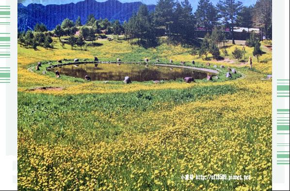108.7.27.(63)福壽山農場.JPG