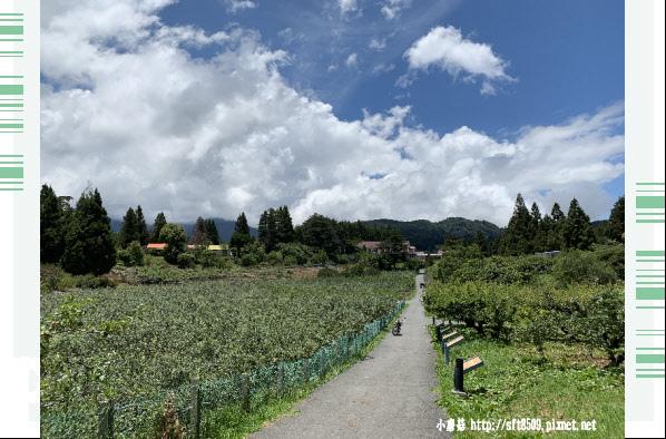 108.7.27.(82)福壽山農場.JPG