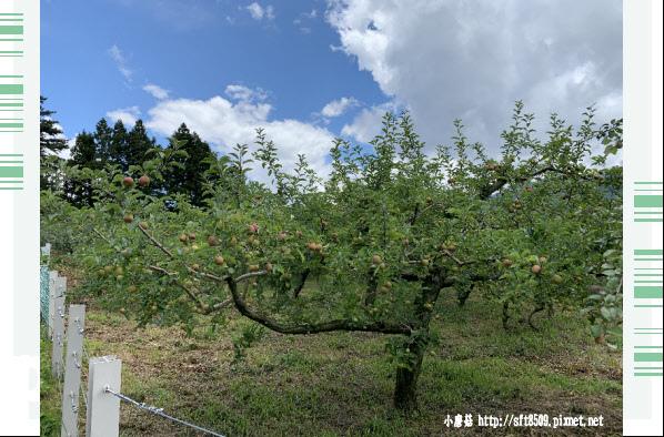 108.7.27.(84)福壽山農場.JPG