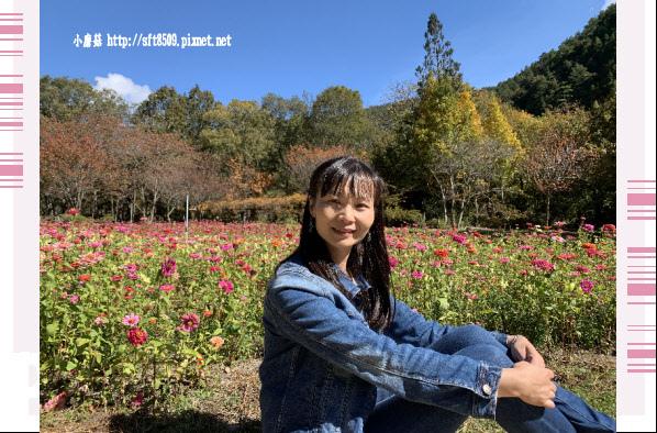 108.11.22.(14)武陵農場.JPG