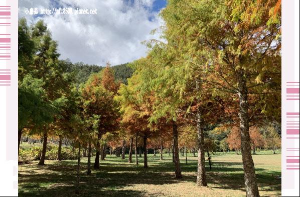 108.11.22.(50)武陵農場.JPG