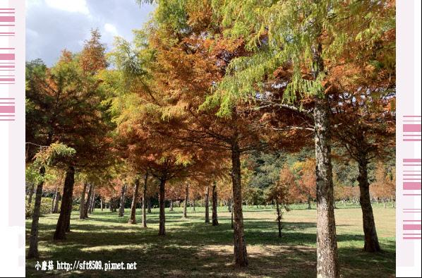 108.11.22.(51)武陵農場.JPG