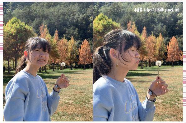 108.11.22.(66)武陵農場.JPG