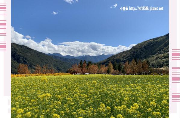 108.11.22.(76)武陵農場.JPG