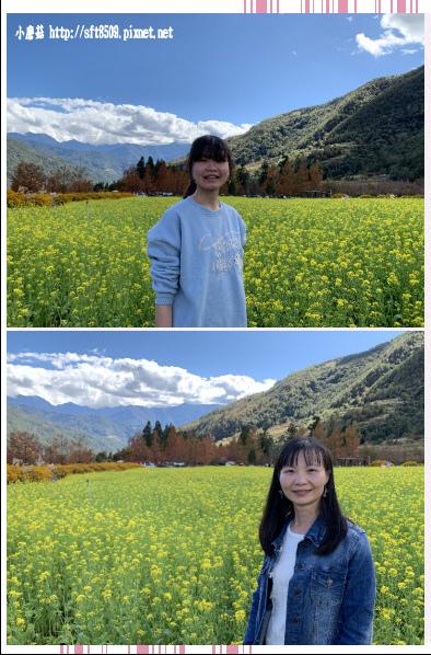 108.11.22.(78)武陵農場.JPG