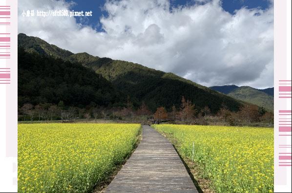 108.11.22.(81)武陵農場.JPG
