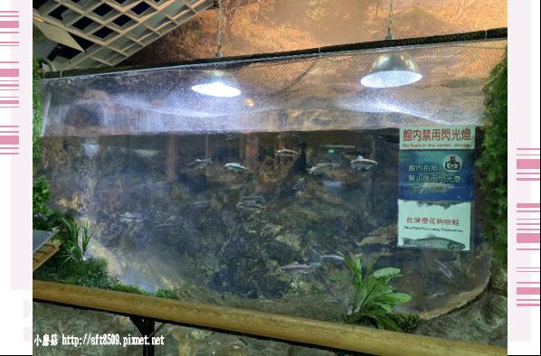 108.11.22.(117)武陵農場.JPG