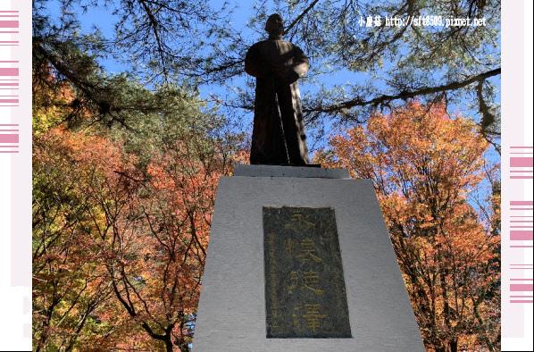 108.11.23.(3)福壽山農場.JPG