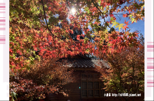 108.11.23.(43)福壽山農場.JPG