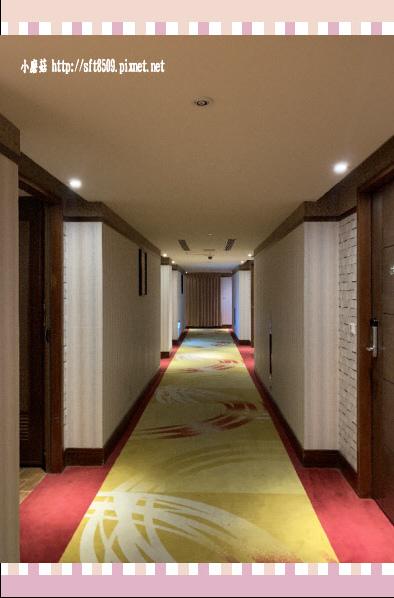 109.1.25.(24)台南-嘉新大飯店.JPG