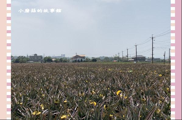 109.3.15.(2)旺萊山文創園區.JPG