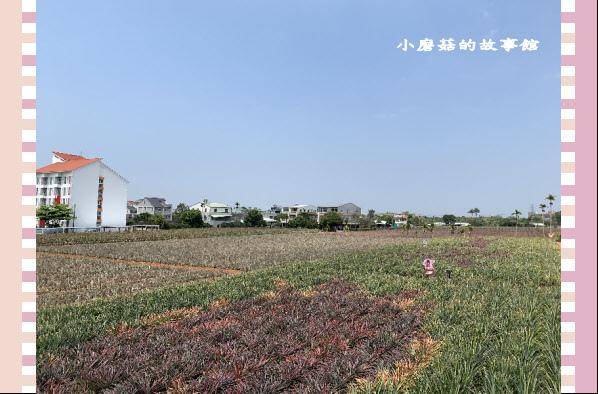 109.3.15.(43)旺萊山文創園區.JPG