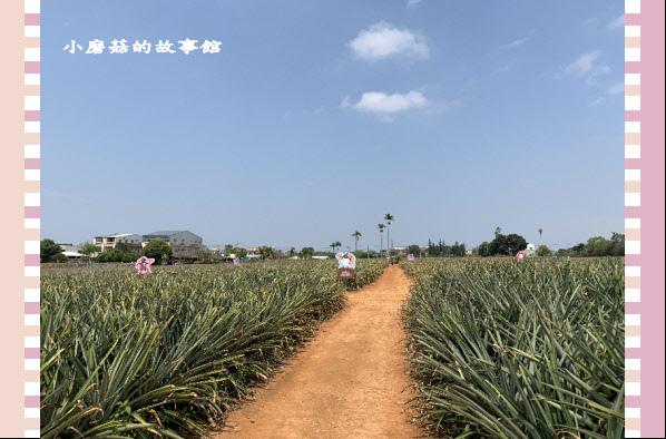 109.3.15.(54)旺萊山文創園區.JPG