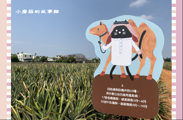109.3.15.(59)旺萊山文創園區.JPG