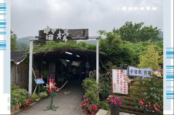 109.4.19.(1)竹子湖-苗榜海芋田.JPG