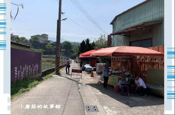 109.4.16.(5)葛瑞絲香草田.JPG