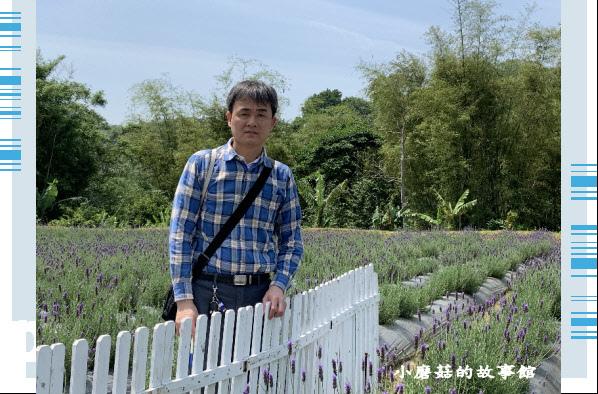 109.4.16.(58)葛瑞絲香草田.JPG